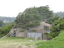 Sea Ranch (119)